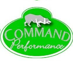 CSJ Command Performance